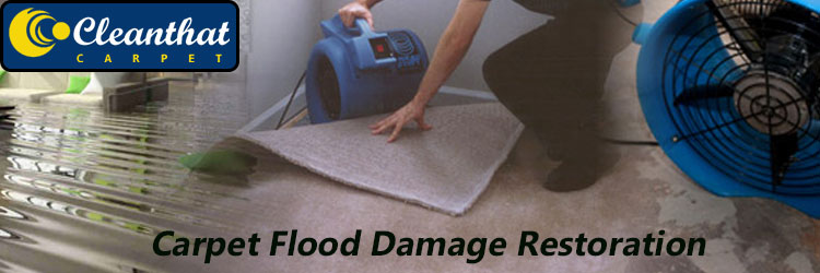 Carpet Flood Damage Restoration Henley Beach