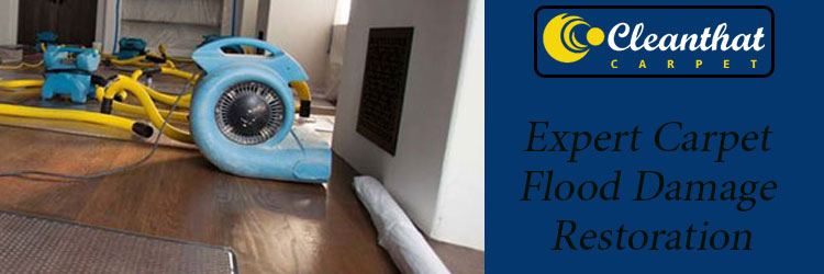 Expert Carpet Flood Damage Restoration Henley Beach