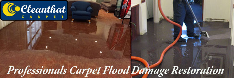 Professionals Carpet Flood Damage Restoration Pine Point