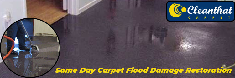 Same Day Carpet Flood Damage Restoration Pine Point